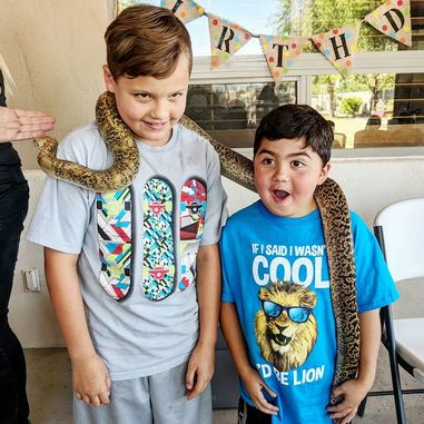 Radical Reptile Fun Offers Four Main Birthday Packages Standard Show Package Party And Deluxe
